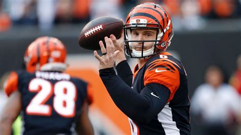 Bengals tout the legend of Jeff Driskel before his first