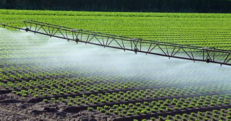 irrigation and drainage | Definition, History, Systems